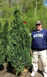 Hopkinton Stone & Garden Center | Trees, Shrubs, Plants | Hopkinton, MA