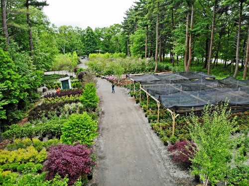 Sales yard at Hopkinton Stone & Garden